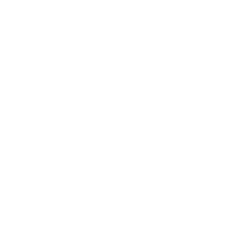The Record Machine logo